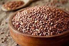 Bowl Of Raw Organic Lentils. Close up of some organic brown lentils royalty free stock photos