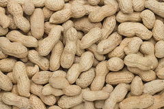 Close-up of some peanuts Stock Photos
