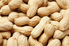 Close up peanuts background royalty free stock image