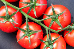 Close-up of some ripe tomatoes. On the vine Stock Image