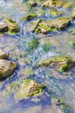 Close up of some stones with moss and mold in a river. Beautiful close up of some stones with moss and mold in a river with calm water on a sunny day royalty free stock images