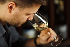 Close up of sommelier man sniffing wine in glass. Close up of sommelier man sniffing white wine poured in glass, degustation process of man trying to get info Royalty Free Stock Photos