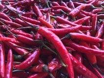 Close-up sommige rode die Spaanse pepers voor Thaifood worden gemengd royalty-vrije stock fotografie