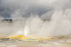 Close-up of Spasm Geyser Royalty Free Stock Photo