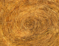 Close-up spiral hay bale face background. Close-up of the spiral face of a golden round hay bale, suitable for background Royalty Free Stock Photos
