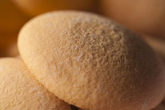 Close-up of sponge biscuit Royalty Free Stock Images