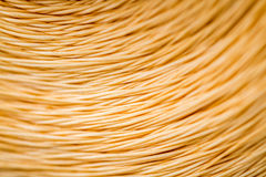 Close up of a Spool of Synthetic Orange Thread Royalty Free Stock Image