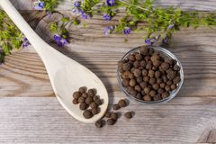 Close up on spoon with allspice pimento. On wooden cutting board royalty free stock images