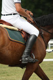 Close up of sportsman sitting on the horse Stock Photos