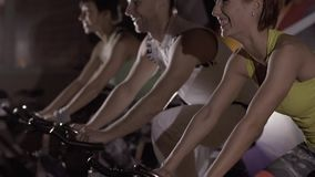 Close-up of sporty group doing cardio training in the gym. Close-up of sporty group doing cardio training together in the gym