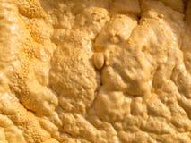 Close-up of Sprayed on PU-Foam Insulation Royalty Free Stock Image