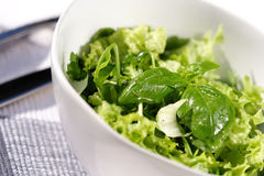 Close up of spring salad Stock Photography