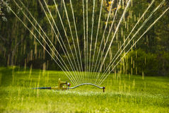 Close up sprinkler. Sprinkler watering lawn back lit by sun Stock Photo