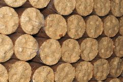 Close-up of a stack of biomass briquettes. Stack of biomass briquettes from wood sealed with plastic royalty free stock photos