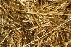 Close up of a Stack of Hay royalty free stock photography