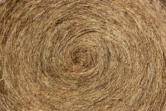 A close-up stack of hay twisted in a circle Royalty Free Stock Photo