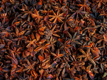Star Anis. Close up of Star Anis from India Stock Images