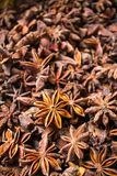 Close-up of star anise Royalty Free Stock Image