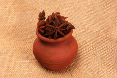 Close up of Star anise,in pot on a dark backdrop Stock Image