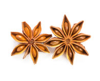 close up the star anise on white background Stock Photography