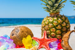 Close up of star fish and tropical fruits Stock Photos