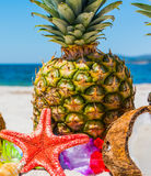 Close up of star fish and tropical fruits Stock Photo