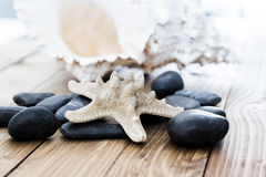 Close-up of  starfish seashell on old wooden board Stock Images