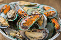 Close up steamed mussels Royalty Free Stock Image