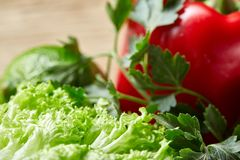 Close-up still life of assorted fresh vegetables and herbs on rustic wooden background, top view,shallow depth of field. Seasoning close-up still life of Stock Photos