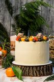 Close up. New Year`s Cake, decorated various berries. Gray wooden background, junipes branches royalty free stock photography