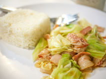 Close up stir fired cabbage and bacon with jasmine rice on white plate stock photography