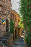 Close-up of stone house facade with bindweed in an alley at Les Arcs-sur-Argens at Les Arcs-sur-Argens Stock Photo