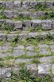 Close-up of stone stairway with grass rising in the spans Royalty Free Stock Images