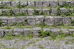 Close-up of stone stairway with grass rising in the spans Royalty Free Stock Photo
