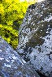 Close-up stone texture Stock Photo