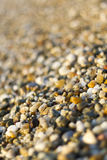 Close up of Stones on beach. Summer background. Selective focus Stock Photos