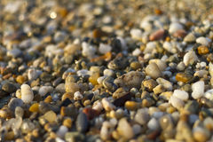 Close up of Stones on beach. Summer background. Selective focus royalty free stock photo