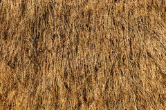Close up of straw Stock Photos