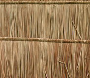 Close up straw background Stock Photography