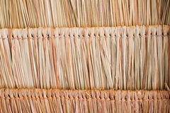 Close up straw background. Texture of straw in Thailand Royalty Free Stock Image