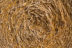Close up of straw bale Royalty Free Stock Image