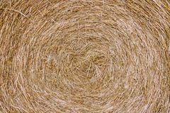 Close up of straw bale on farmland - Texture of straw. Close up of straw bale on farmland - Bright texture of straw Stock Photography