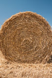 Close up of the straw bale. Stock Photography