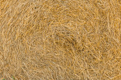 Close up of straw bale Stock Image