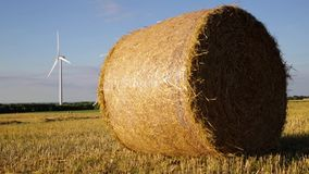 Straw ball in a field with wind farm in background. Close-up of straw ball in a field with wind farm in background stock footage