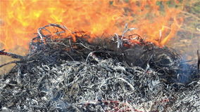 Close-up straw burning stock footage