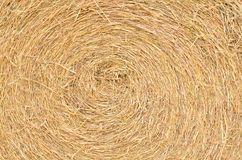 Close up straw texture Royalty Free Stock Images