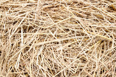 Close up straw texture. Background royalty free stock image