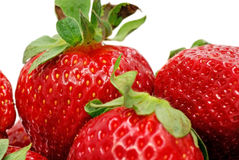 Close up of strawberries. Isolated on white background Royalty Free Stock Photography