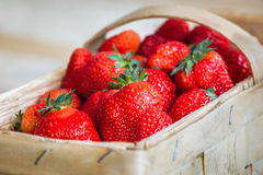 Close-up of strawberries Stock Images